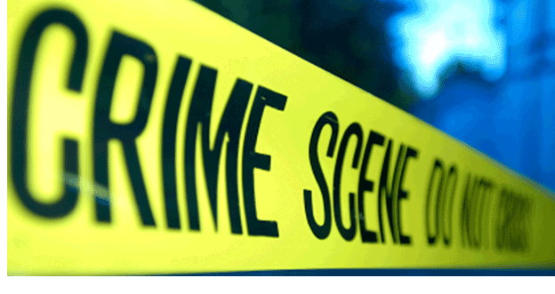 Using Business Analytics for crime control